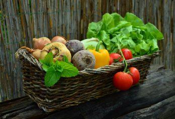perdre du poids en mangeant des fruits et des légumes